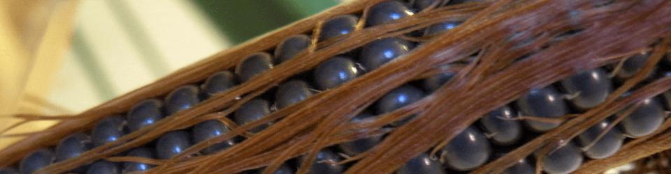 AGROSOL Videoposnetki